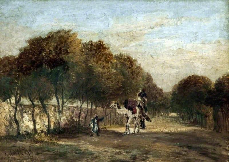 Landscape and Camel