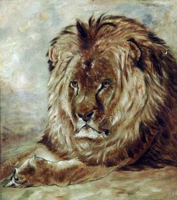 'Leo' the Favourite