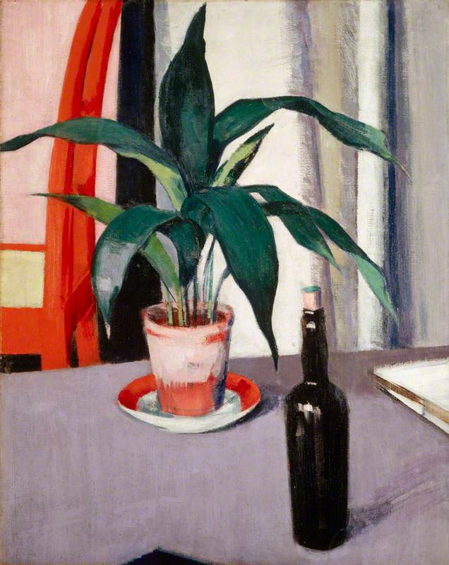Aspidistra and Bottle on Table