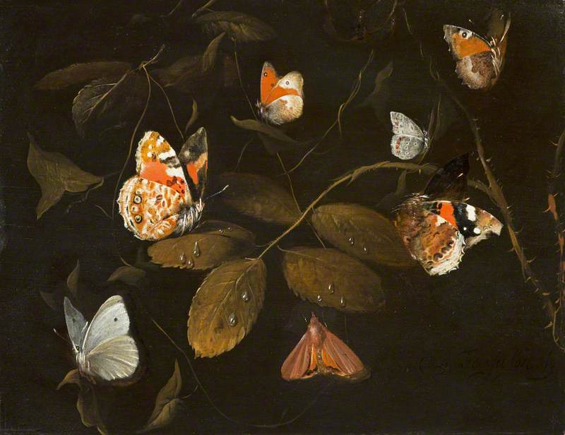 Sept papillions sur une branche de rosier (Still Life of Six Butterflies and a Moth on a Rose Branch)