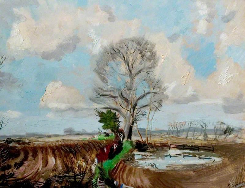 Hedging at Cornard Tye, Suffolk