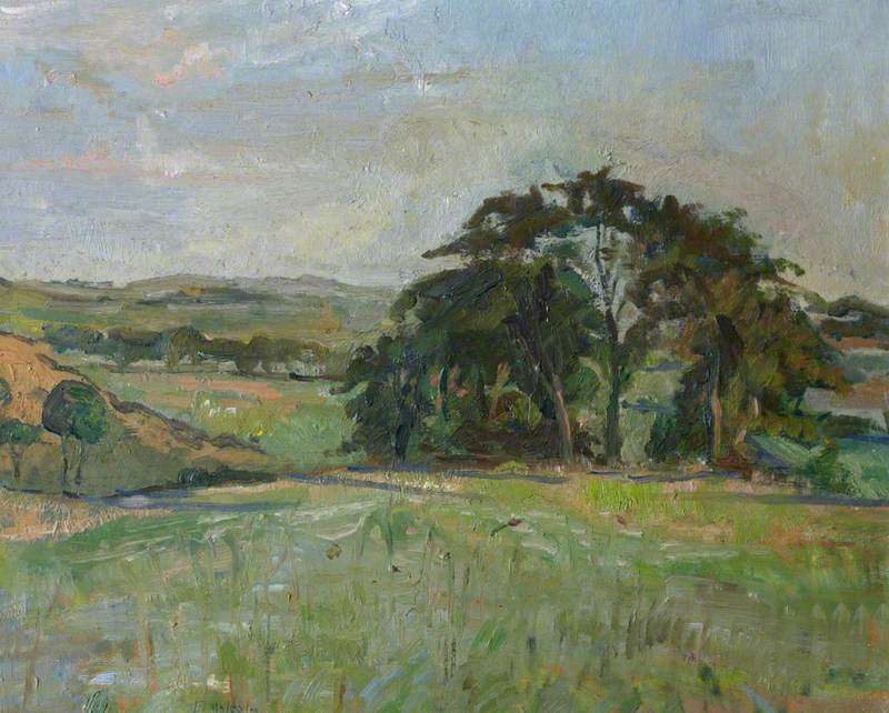View of Fields and Trees