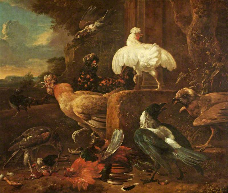 Poultry Attacked by Predatory Birds in a Landscape