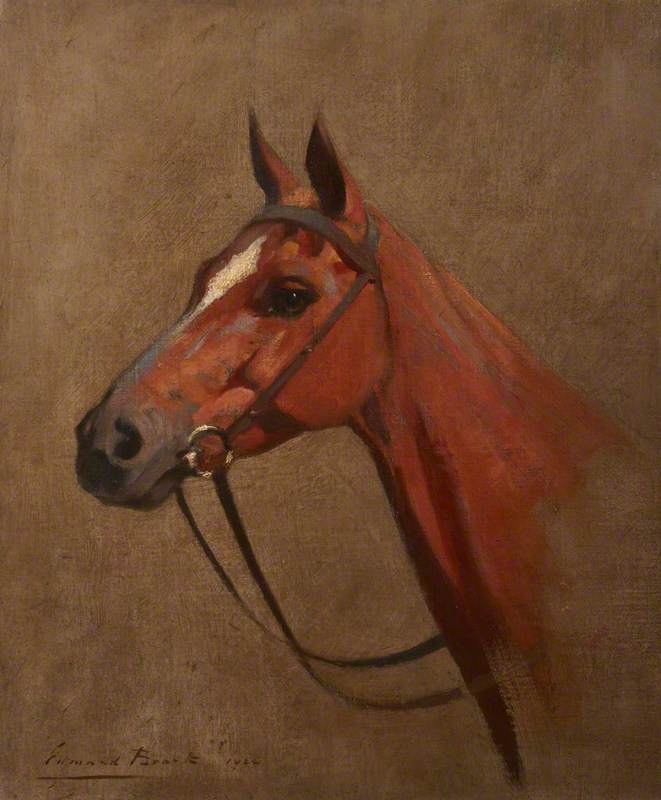 Study of a Horse's Head