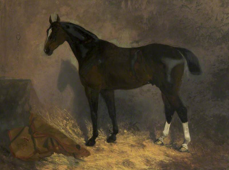 'Yeoman': A Racehorse in a Stable