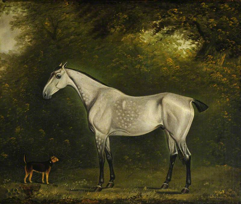 A Dappled Grey Hunter with a Terrier amongst the Trees