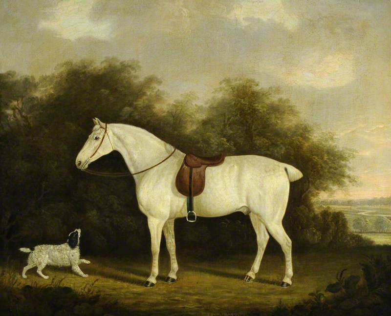 A Saddled Grey Hunter with a Spaniel in a Wooded Landscape