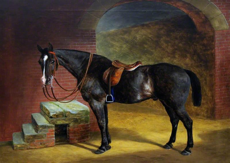 A Saddled Dark Bay Hunter by Mounting Steps