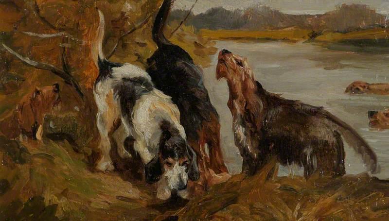 Otter Hounds