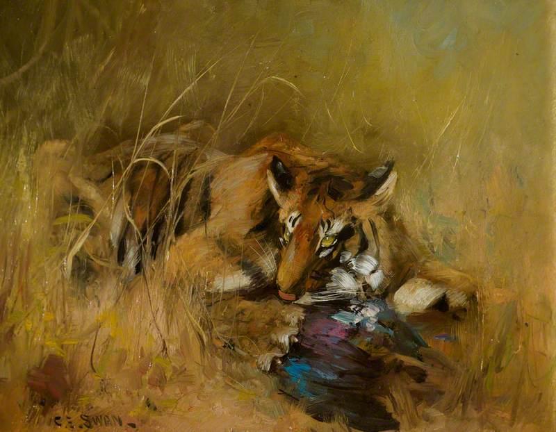 Tiger with Prey