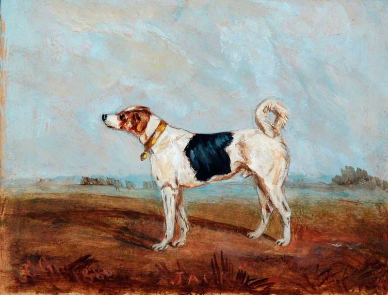 Jack, the Railway Dog