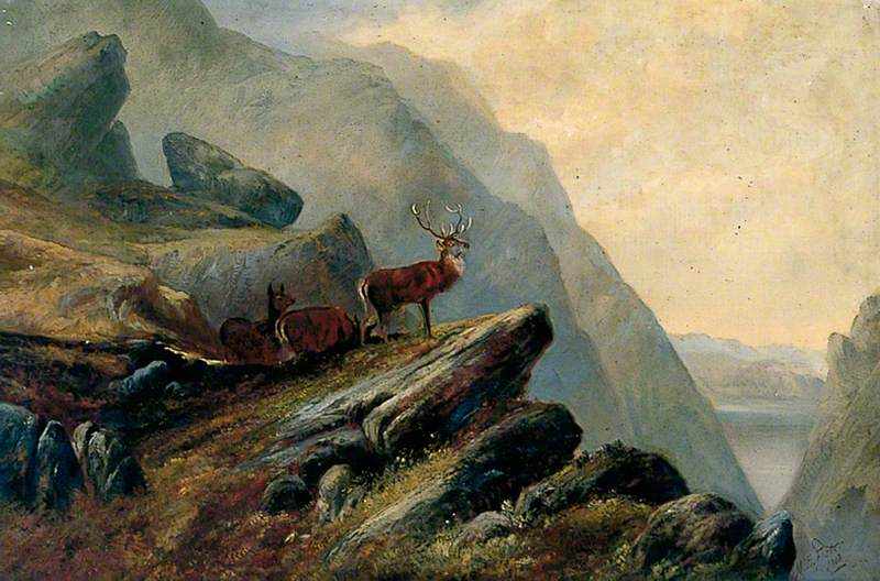 Stags in a Hilly Landscape