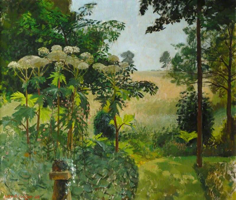 A Shady Garden
