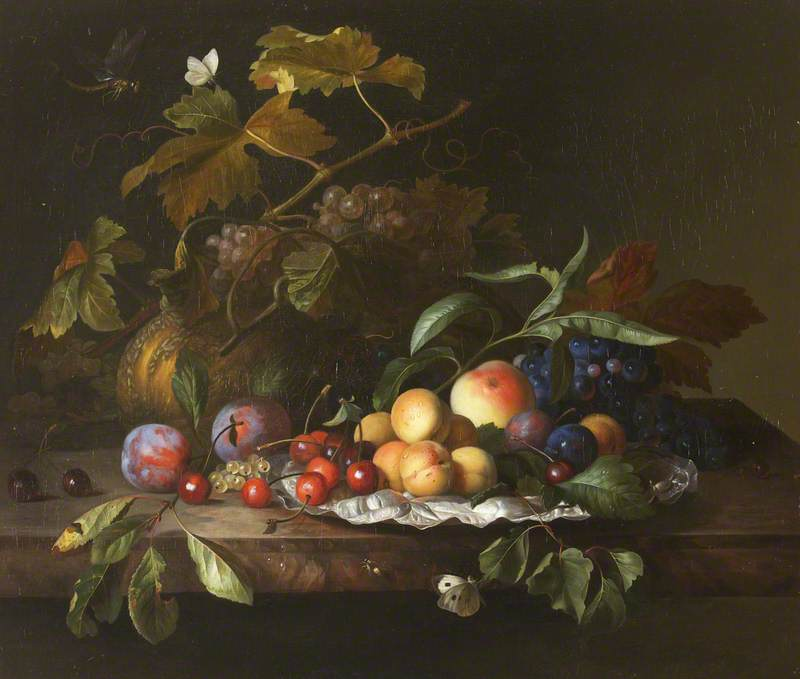 A Melon, Grapes, Apples, Peaches, Plums, Apricots, Cherries, and Insects on a Ledge
