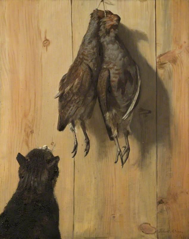 Cat and Partridges