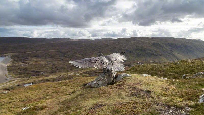 Glendoe Eagle