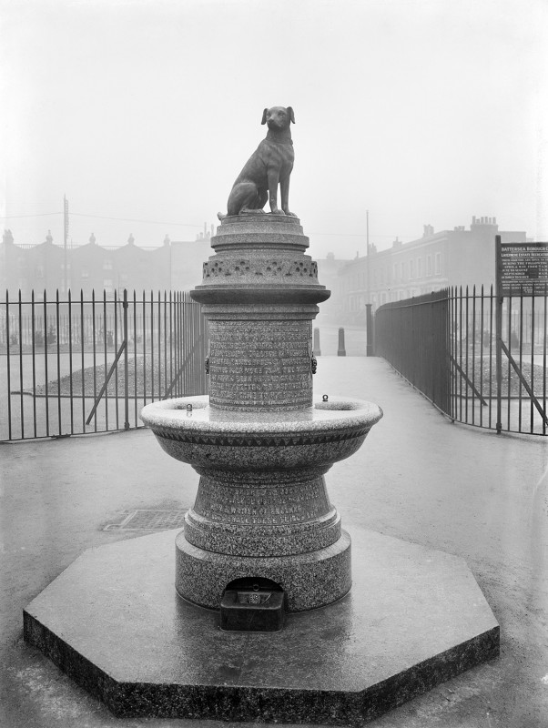 Brown Dog Memorial and Fountain