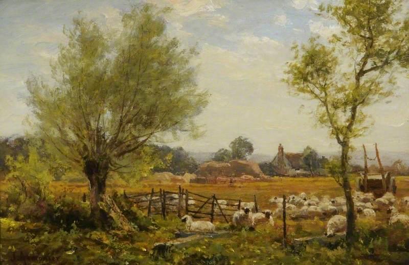 An Oxfordshire Sheep Farm