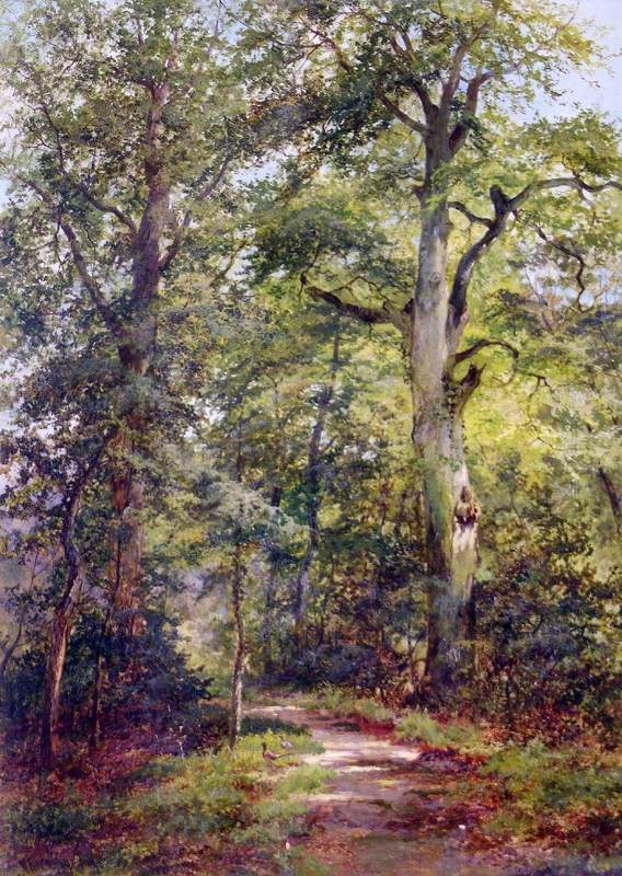 In the Garden of the Grove, Boxhill