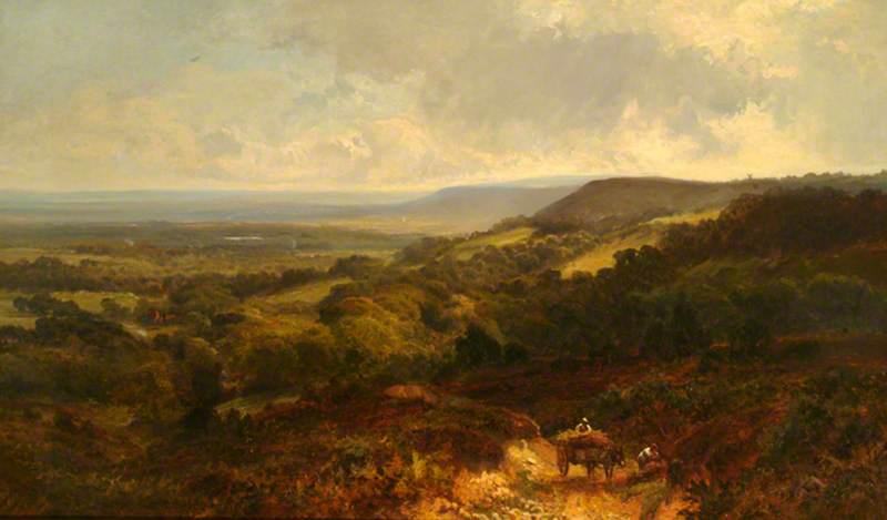 The Weald of Surrey