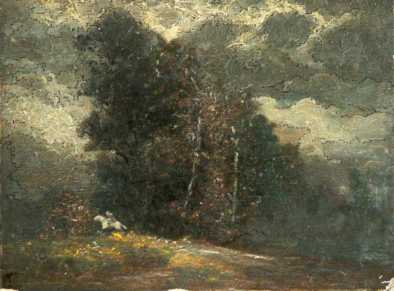 Trees and White Horse