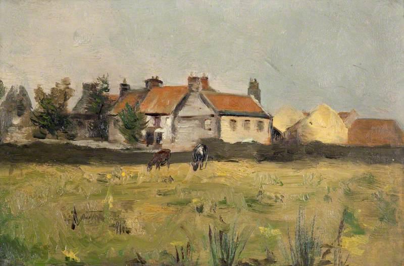 Cattle Grazing near Haddington
