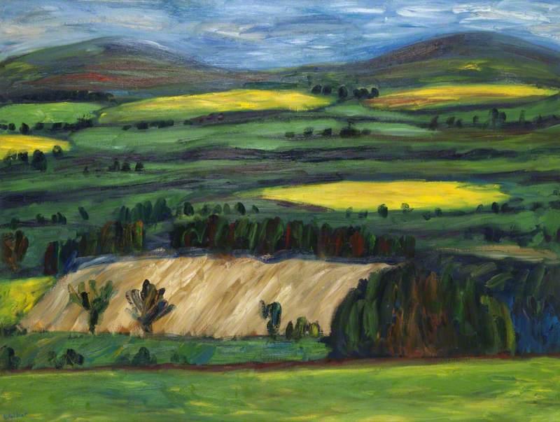 Border Fields in Springtime