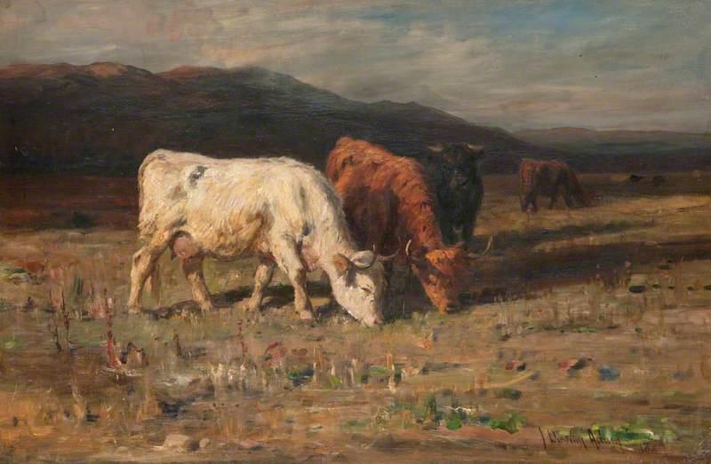Scanty Pastures