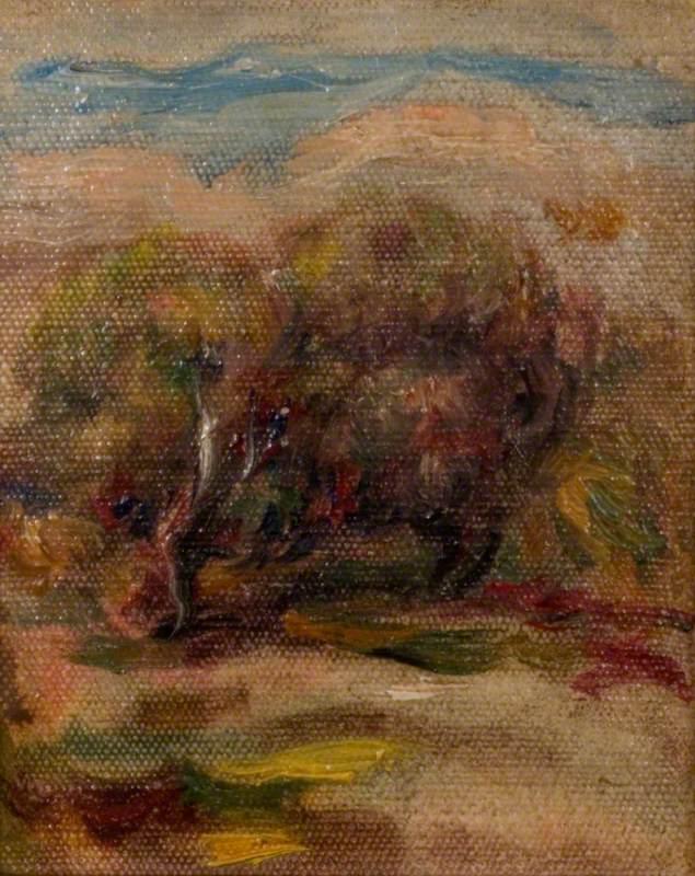Les oliviers à Cagnes-sur-Mer