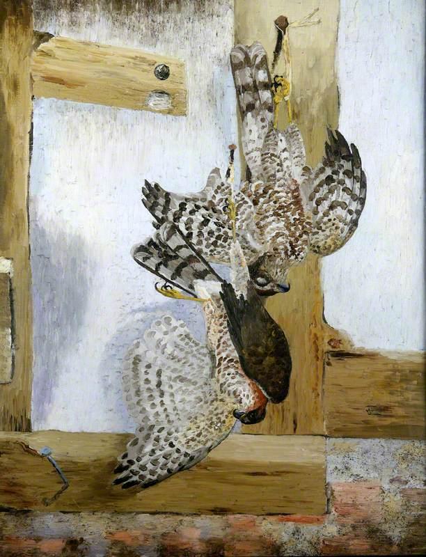 The Sparrow Hawks