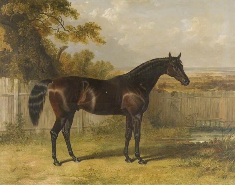 'Rockingham'