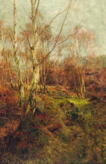 Birch and Bracken, Adel Moor, Leeds