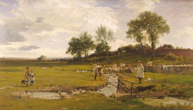 Sheep-Washing in Sussex
