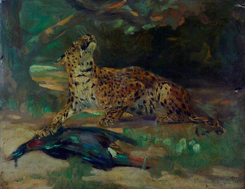Leopard and Bird