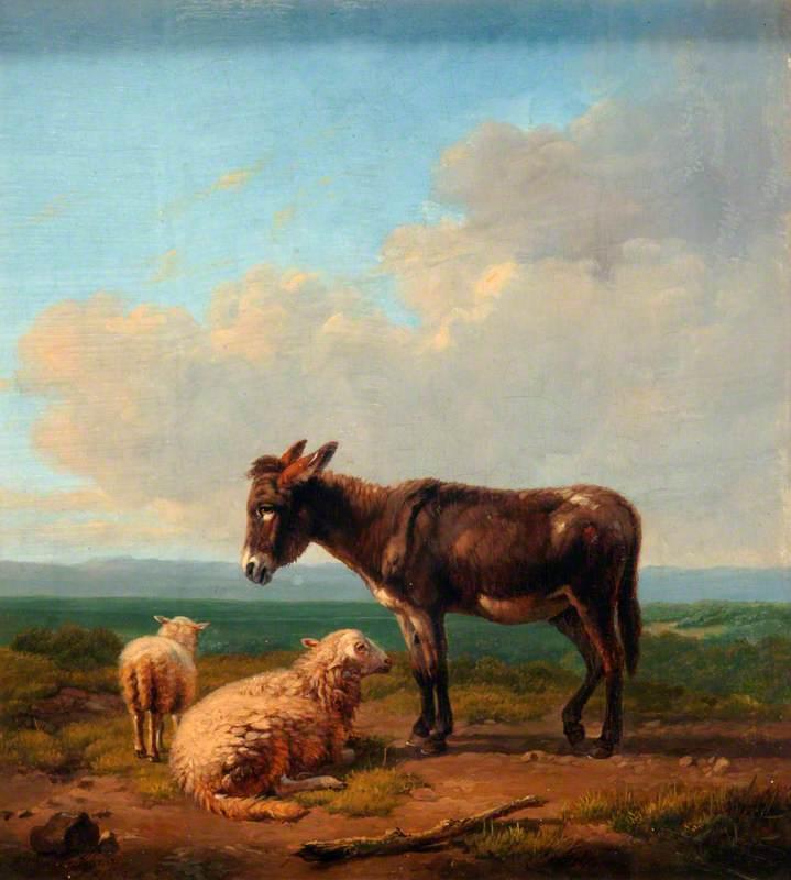 Donkey and Lambs