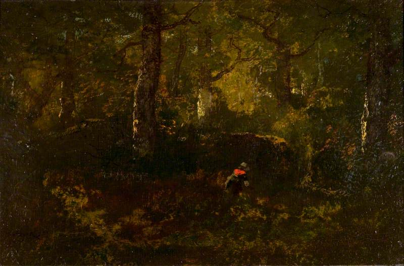 View in Fontainebleau Forest, Evening