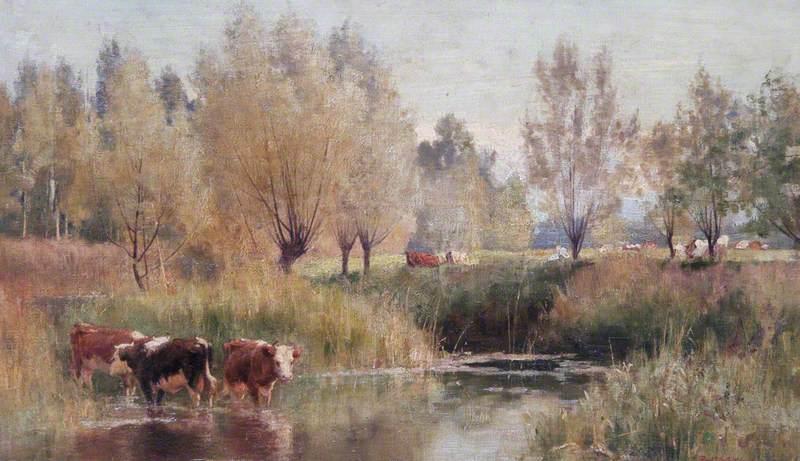 Landscape, South of France