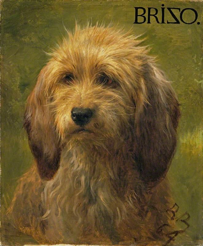 Brizo, A Shepherd's Dog