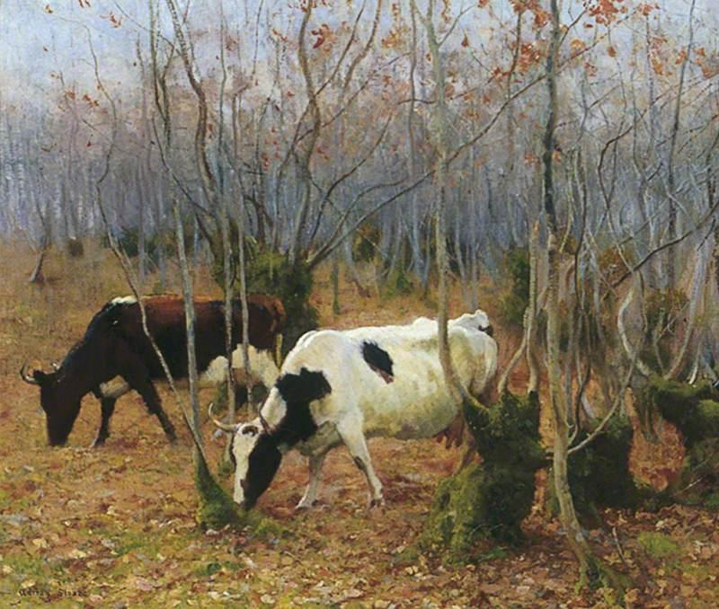 Cows in a Copse