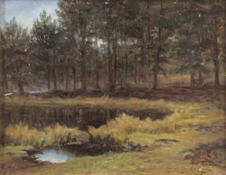 The Deer's Lochie