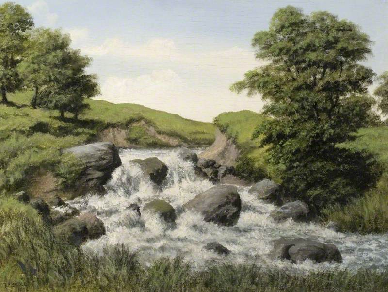 Rapids on a River in a Hilly, Grassy Landscape
