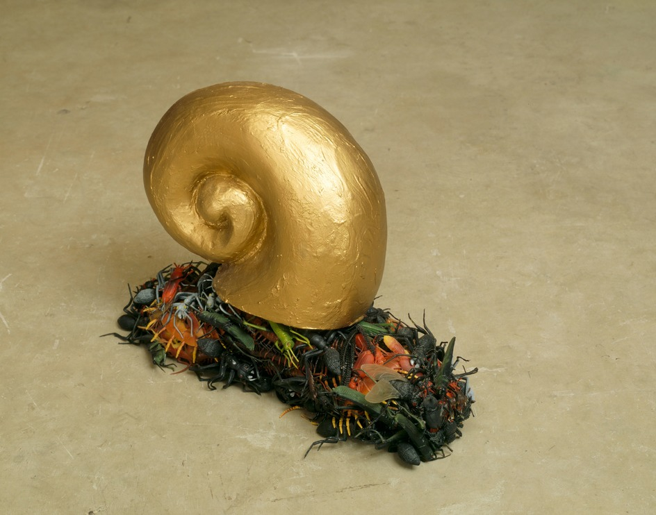 First Snail/From the Thousand Eared Night