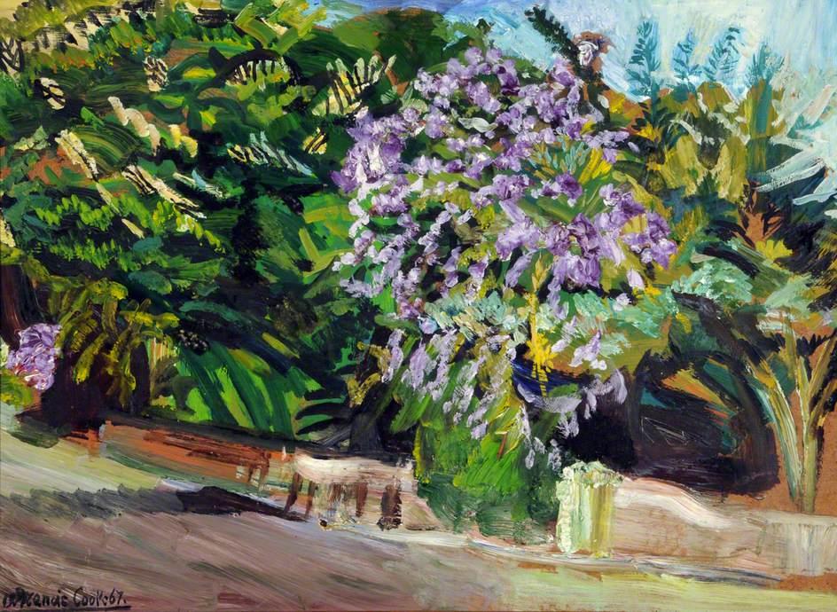 Bougainvillea Bush and Trees, Eastern Road, Nassau
