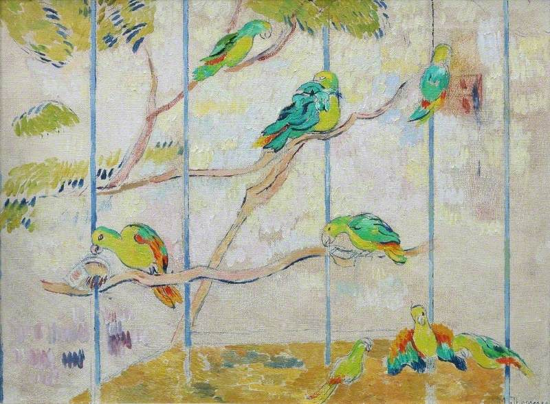 Parrots at Birdworld