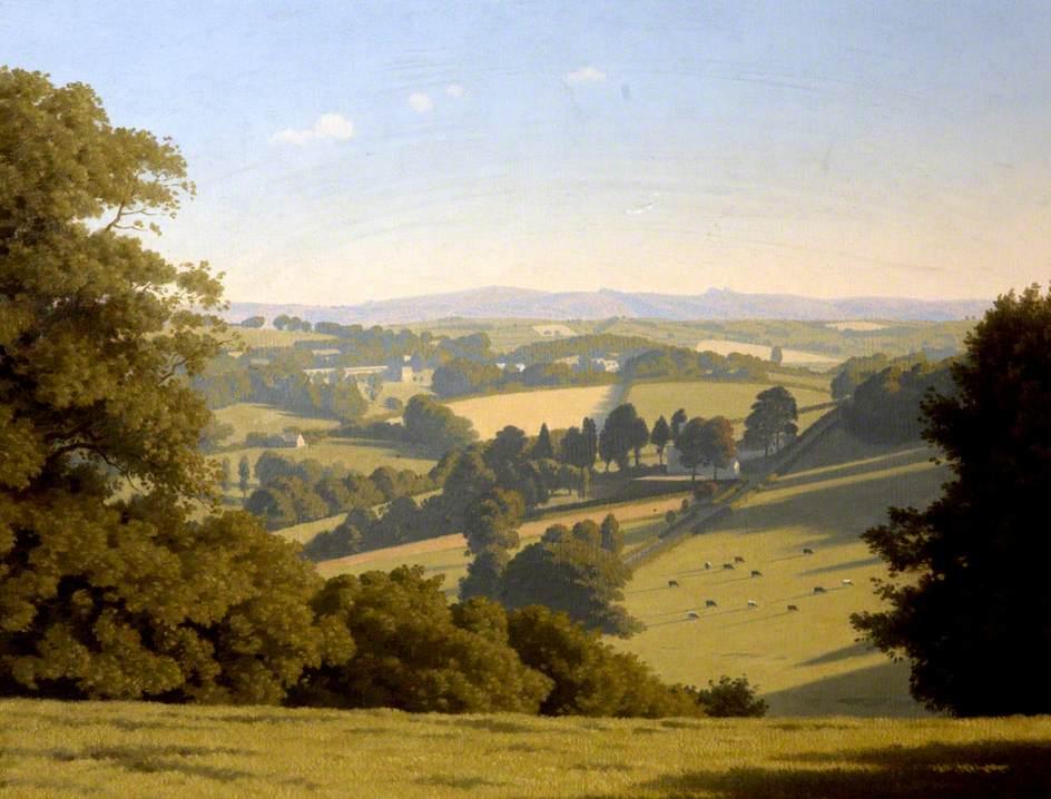 View from Shell Field, Totnes, Devon