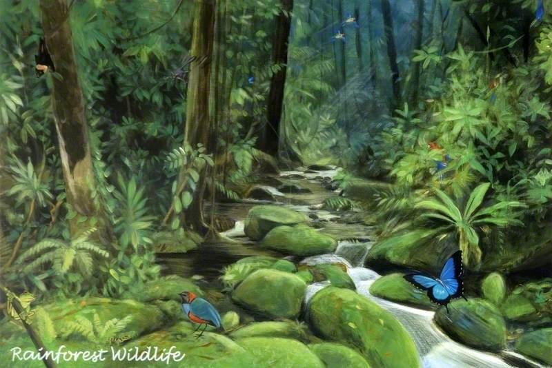 'Dreams of Australia' Series, Rainforest Wildlife