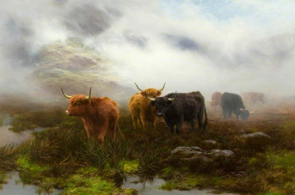 Moorland and Mist