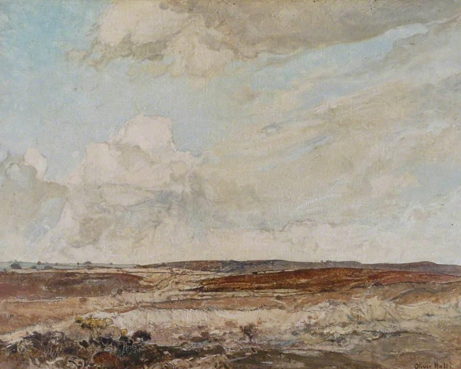 Dorset Moorland