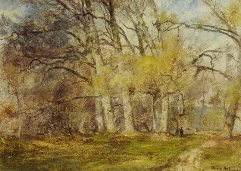 Early Spring in Parham Forest