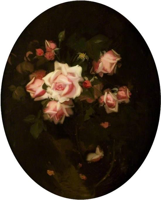 Roses 'La France'
